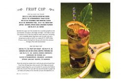 Gin Fruit Cup